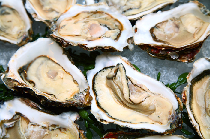 899oyster