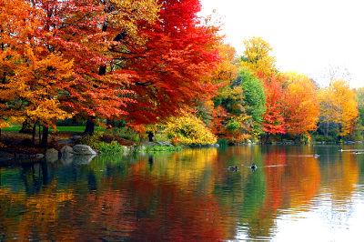 Jesień w Nowym Jorku