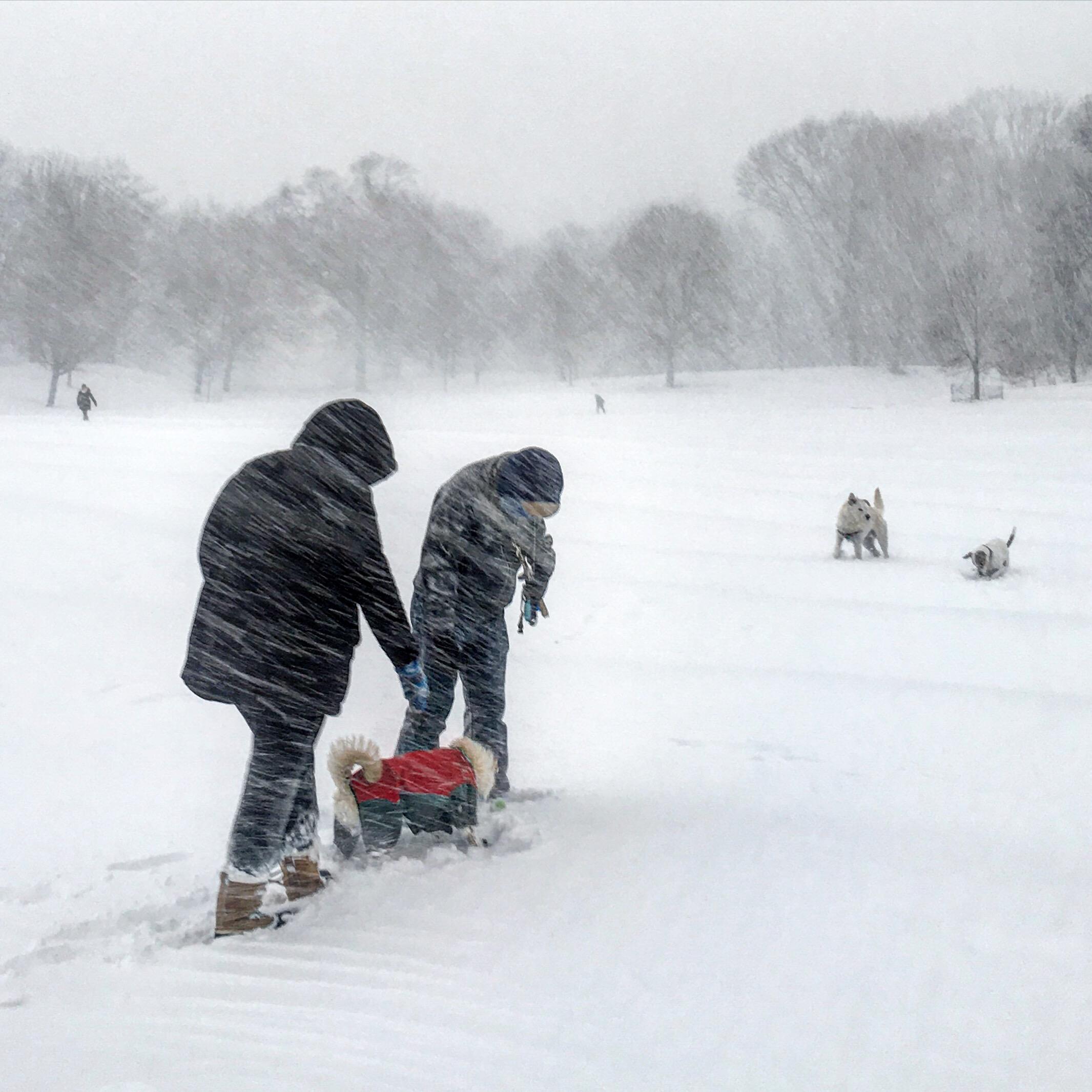 Śnieżna zima w Nowym Jorku