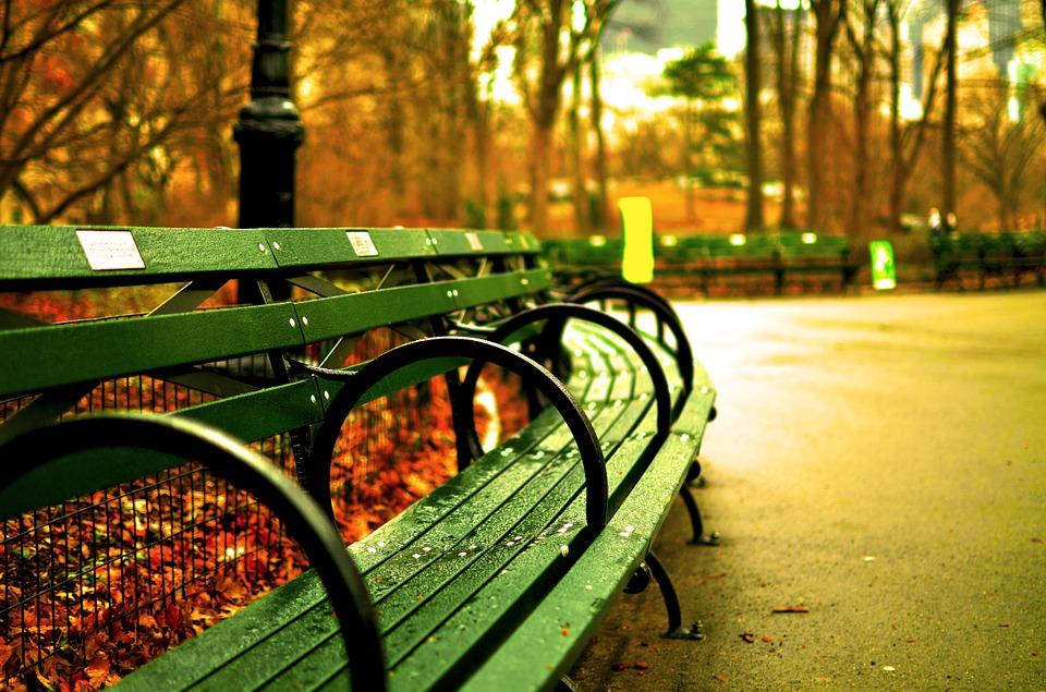 Central Parku